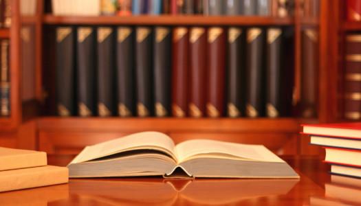 Apprendistato e Giurisprudenza: i consigli di Luca per il colloquio perfetto