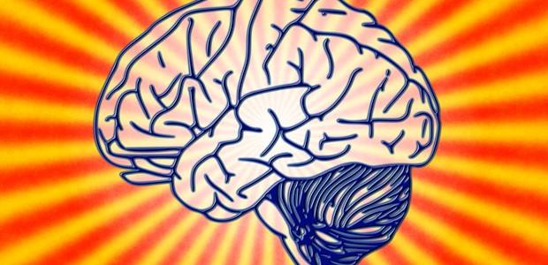 Giurisprudenza: serve davvero studiare a memoria?