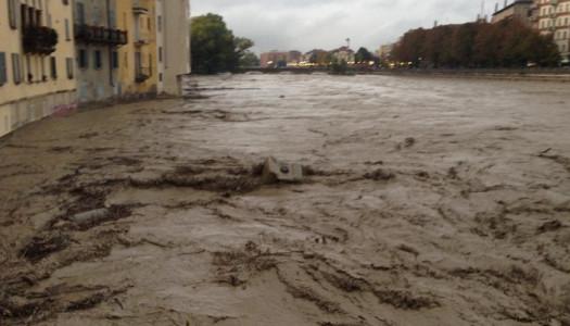 A Parma, tra fango e speranza [intervista]
