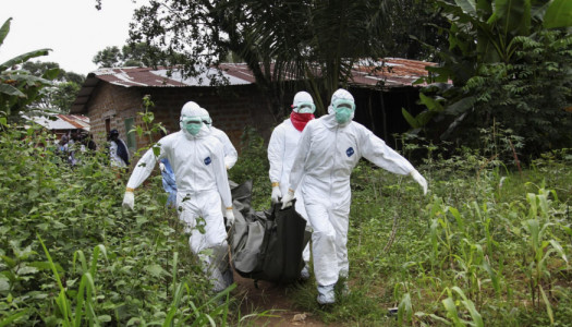 Speciale Ebola #2: una questione economica
