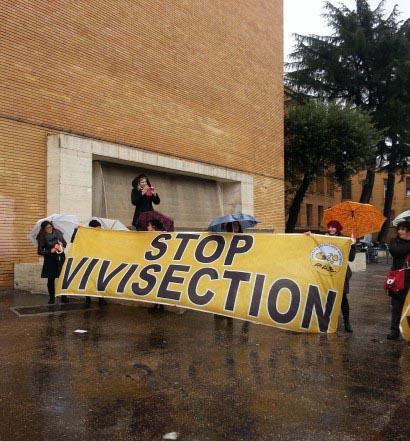 Alcuni animalisti manifestano per liberare i Macachi davanti La Sapienza di Roma